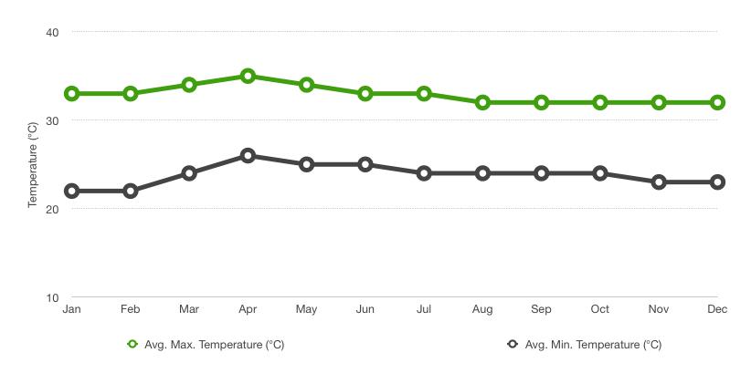 Saigon Temperature Chart