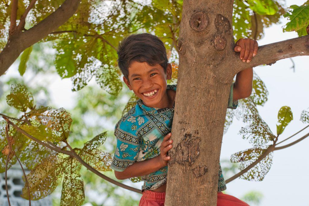 Cambodian boy in a tree
