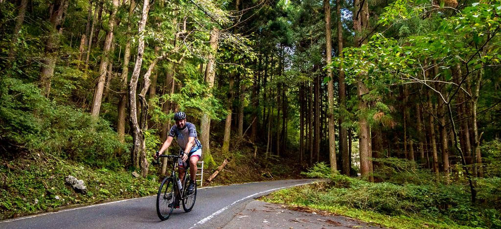 Cyclist on paved road through forest in Japan
