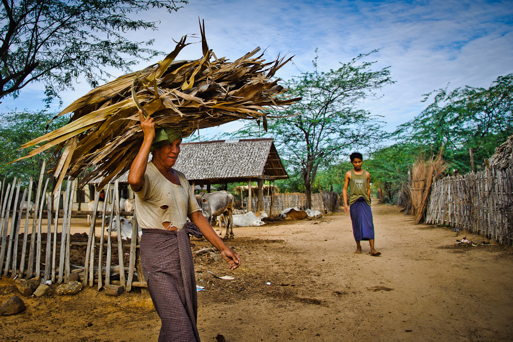 carrying firewood in Myanmar