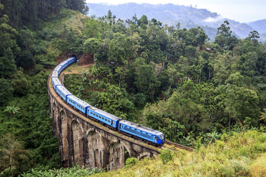 Blue train coming around curved bridge in the middle of forest